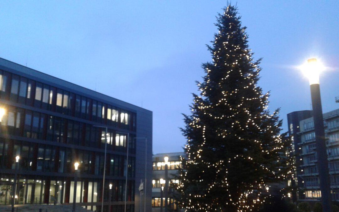Weihnachtsgruß der DGV-Geschäftsstelle
